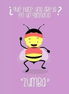 que-hace-una-abeja-en-un-gimnasio-zumba-top-humor-en-redes-sociales-de-yecla-ofertas-y-chistes-graficos-hoy